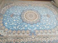 فرش 12متری مستقیم از شرکت در شیپور-عکس کوچک