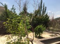 135متر اپارتمان واقع در کوهسار درکه در شیپور-عکس کوچک