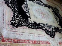 فرش 12 متری سلیمان  در شیپور-عکس کوچک