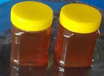 عسل طبیعی (اعلأ) کردستان در شیپور-عکس کوچک