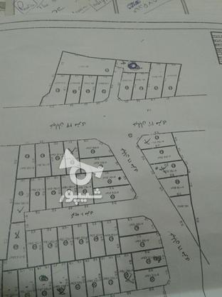 زمین تفکیکی  200متر  طالبی  زیر قیمت در گروه خرید و فروش املاک در مازندران در شیپور-عکس1