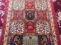 فرش دستباف یک متر دریک ونیم در شیپور-عکس کوچک