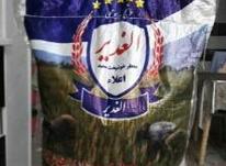 برنج پاکستانی و ایرانی در شیپور-عکس کوچک
