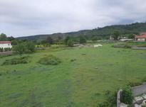 فروش زمین شهرکی مسکونی 400 متر در رویان در شیپور-عکس کوچک
