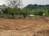 4000متر زمین در منطقه گردشگری آهندان در شیپور-عکس کوچک