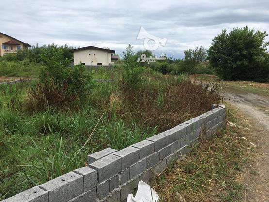 زمین 320 متری در چالوس در گروه خرید و فروش املاک در مازندران در شیپور-عکس2