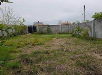 فروش زمین مسکونی 437 متری در رضوانشهر در شیپور-عکس کوچک