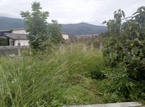 زمین مسکونی داخل بافت 250 متر در کلارآباد در شیپور-عکس کوچک