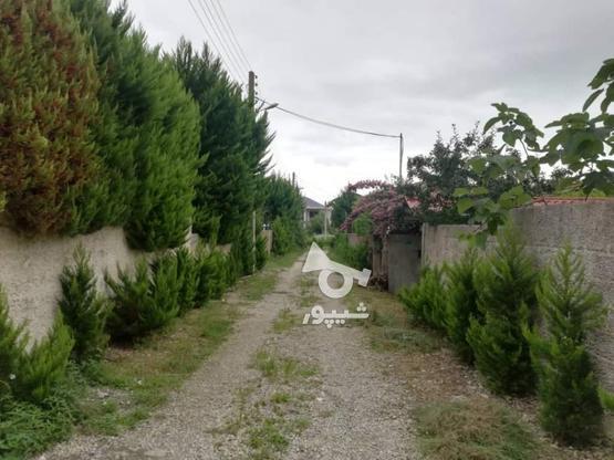 فروش ویلا 560 متر در نوشهر در گروه خرید و فروش املاک در مازندران در شیپور-عکس4