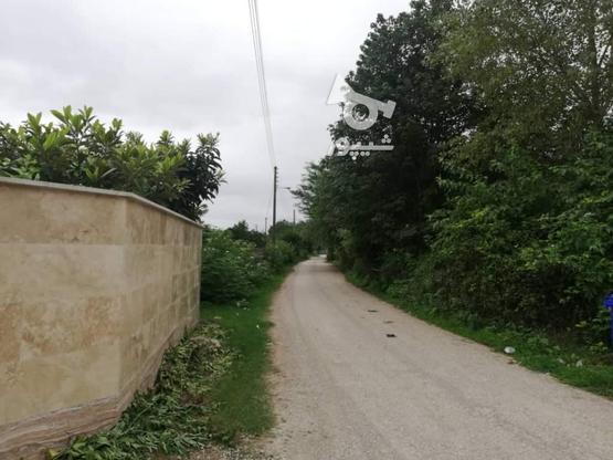 فروش ویلا 560 متر در نوشهر در گروه خرید و فروش املاک در مازندران در شیپور-عکس10