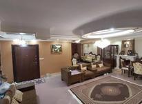 فروش آپارتمان 197 متر در یوسف آباد در شیپور-عکس کوچک