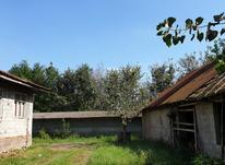 3500 متر زمین مسکونی در روستای انارستان در شیپور-عکس کوچک
