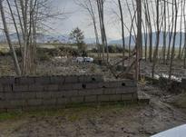 زمین مسکونی 234 متر در  بوجایه لاهیجان در شیپور-عکس کوچک