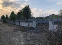 فروش زمین مسکونی 230 متری شهرکی در زیباکنار در شیپور-عکس کوچک