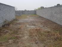 زمین  245 متری در میدان جانبازان کوچه فجر / فوری  در شیپور