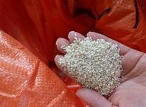 فروش نیم دانه برنج هاشمی در شیپور-عکس کوچک