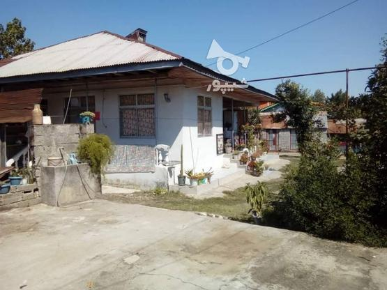 فروش ویلا 1700 متر در رضوانشهر در گروه خرید و فروش املاک در گیلان در شیپور-عکس1