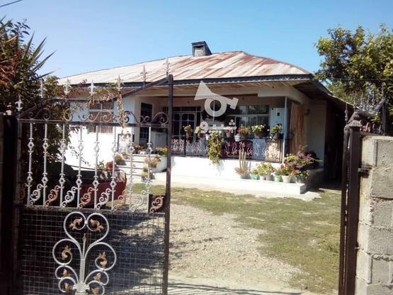 فروش ویلا 1700 متر در رضوانشهر در گروه خرید و فروش املاک در گیلان در شیپور-عکس2