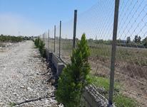 فروش زمین باغی 200 متر در شیپور-عکس کوچک