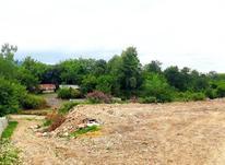 زمین مسکونی 470 متر در آمل در شیپور-عکس کوچک