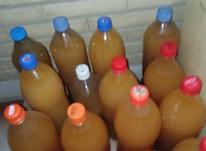 عسل 100% طبیعی و سرکه سیب خانگی در شیپور-عکس کوچک
