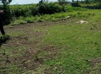 فروش زمین کشاورزی 360 متر در آمل در شیپور-عکس کوچک