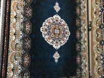 فرش هالیدی قیمت مناسب در شیپور