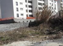 زمین مسکونی 461 متر در لوکیشن خوب نخست وزیری بابلسر در شیپور-عکس کوچک
