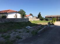 فروش زمین مسکونی 580 متر در نشتارود در شیپور-عکس کوچک