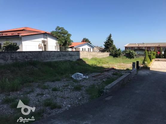 فروش زمین مسکونی 580 متر در نشتارود در گروه خرید و فروش املاک در مازندران در شیپور-عکس1
