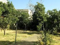 زمین مسکونی 1000 متر،گیلاوند در شیپور