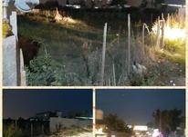 زمین مسکونی 584 مترمربع  در شیپور-عکس کوچک