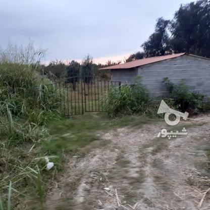 زمین چسبیده به بافت 2900 متر در آمل در گروه خرید و فروش املاک در مازندران در شیپور-عکس1