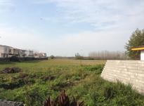 فروش زمین مسکونی 293 متر در زیباکنار در شیپور-عکس کوچک