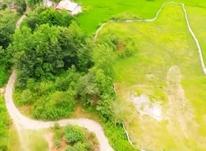 3200زمین باقیمت بسیار مناسب در ارام ترین منطقه لاهیجان در شیپور-عکس کوچک
