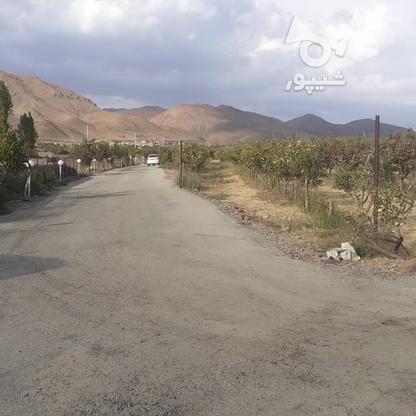 فروش زمین کشاورزی 200 متر در دماوند جابان  در گروه خرید و فروش املاک در تهران در شیپور-عکس3