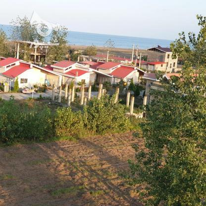 فروش زمین مسکونی 240 متر در چاف و چمخاله در گروه خرید و فروش املاک در گیلان در شیپور-عکس1