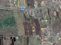 زمین مسکونی دارای سندتکبرگی ۱۵هزارمتری در چاف و چمخاله در شیپور-عکس کوچک