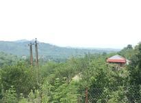 2235 متر باغ درختان میوه با آلاچیق در چوشل در شیپور-عکس کوچک
