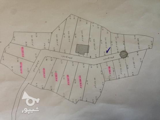 فروش 240 متر زمین مسکونی شهرکی در زیباکنار در گروه خرید و فروش املاک در گیلان در شیپور-عکس1