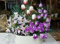 فروش تعدادی سبد گل جدید و نو_ تعدادی گلهای کوچک نو با گلدان در شیپور-عکس کوچک