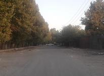 فروش زمین مسکونی 500 متر در شهریار در شیپور-عکس کوچک