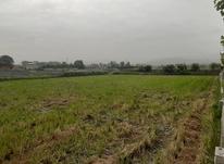 فروش یک پلاک زمین۲۰۰ متری شهرکی کمربندی امامزاده عبدالله  در شیپور-عکس کوچک