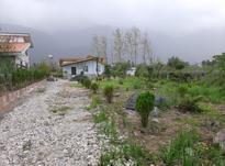 فروش ویلا باغ 1200متری در ملکار نوشهر در شیپور-عکس کوچک
