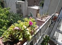 فروش آپارتمان 152 متر در ایرانشهر در شیپور-عکس کوچک