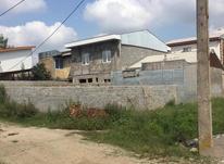 144 متر زمین مسکونی در کوهبنه لاهیجان در شیپور-عکس کوچک