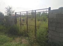 فروش زمین بایر 3000 متر در اطراف رودسر در شیپور-عکس کوچک