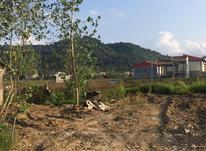 165 متر زمین مسکونی در کوهبنه لاهیجان در شیپور-عکس کوچک