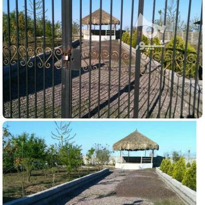 فروش زمین مسکونی 900 متر در چاف و چمخاله در گروه خرید و فروش املاک در گیلان در شیپور-عکس2