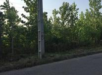 3000 متر زمین مسکونی در آهندان  در شیپور-عکس کوچک